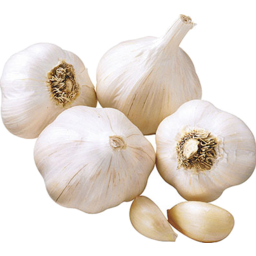 Photo of Garlic