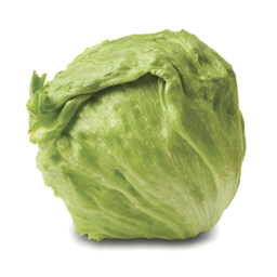 Photo of Iceberg Lettuce