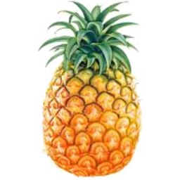 Photo of Pineapple