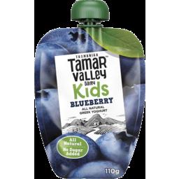 Photo of Tamar Valley Kids Greek Style Yoghurt Blueberry 110gm