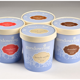 Photo of Gundowring Ice Cream French Vanilla 500ml