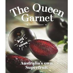 Photo of Plums Queen Garnet