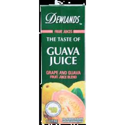 Photo of Dewlands Guava Juice 1l