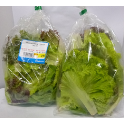 Photo of ORGANIC LETTUCE LOOSE