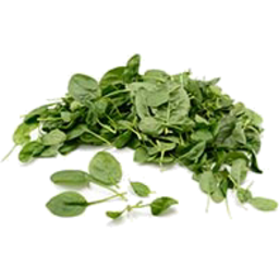 Photo of Organic Baby Spinach (100g)