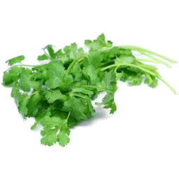 Photo of Thymebank Coriander 10g