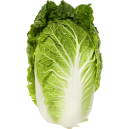 Photo of Chinese Wombok Cabbage