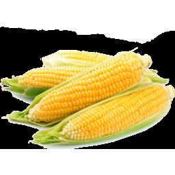 Photo of Corn Loose