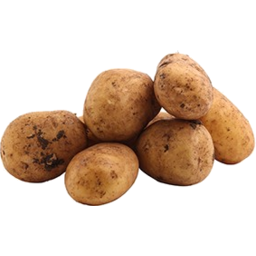 Photo of Potatoes Nicola Organic