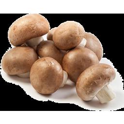 Photo of Mushrooms Chestnut Pack