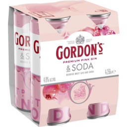 Photo of Gordons Pink Gin & Soda Cans