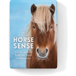 Photo of Horse Sense Card Pack