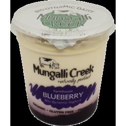 Photo of Mungalli Creek Yoghurt - Blueberry