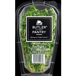 Photo of Butler Pantry Thyme Punnet 20gm