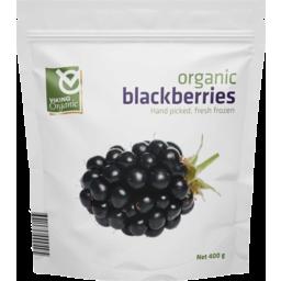 Photo of Viking Organics Frozen - Blackberries (Serbia)