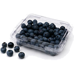 Photo of Blueberries punnett