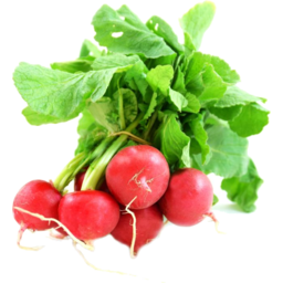 Photo of Radish Red Bunch