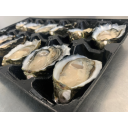 Photo of Fresh Half Shell Oysters (1 Dozen)
