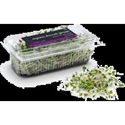 Photo of Sprouts Alfalfa & Broccoli 125g
