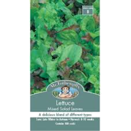 Photo of Lettuce Mixed Salad Leave