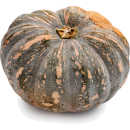 Photo of Pumpkin - Jap