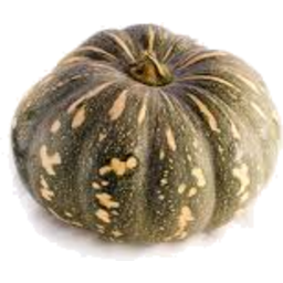 Photo of Pumpkin Kent