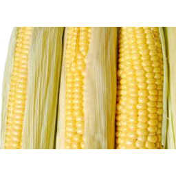 Photo of Sweetcorn 3pk