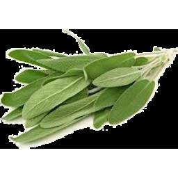 Photo of F/Pick Sage 18gm
