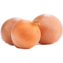 Photo of Brown Onions Organic Kg
