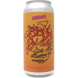 Photo of Duncans Paw Paw 440ml