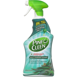 Photo of Pine-O-Cleen Multi Purpose Eucalyptus 750ml