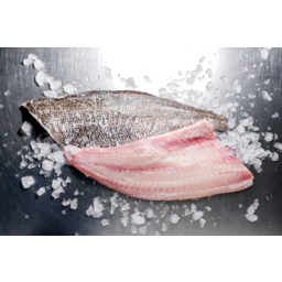 Photo of Fresh Stripey Trumpeter Fillets