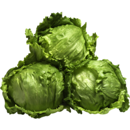 Photo of Lettuce Iceberg