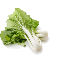 Photo of Bok Choy (White Stem)