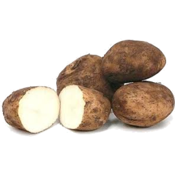 Photo of Potato - Sebago