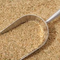 Photo of Rice - Brown Long