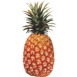 Photo of Pineapple Small
