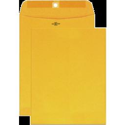 Photo of Brown Envelope 6in X 9in