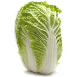 Photo of Cabbage Chinese Whole