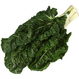 Photo of Spinach English Each