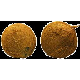 Photo of Coconut
