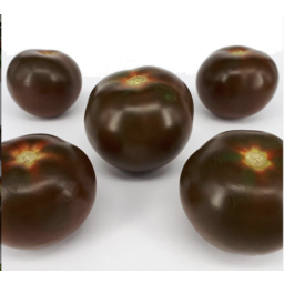 Photo of Tomato - Kumato