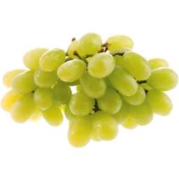 Photo of White Seedless Grape