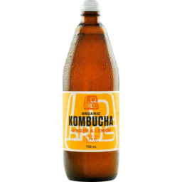 Photo of Lo Bros Kombucha Ginger And Lemon 750ml