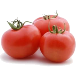 Photo of Organic Tomatoes