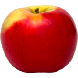Photo of Apples Nz Rose Kg