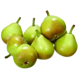 Photo of Pears Paradise Kg