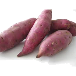 Photo of Sweet Potato Red