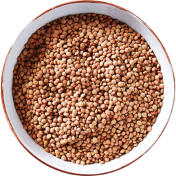 Photo of Organic Persian Red Lentils