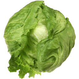 Photo of Lettuce Ice Berg Each